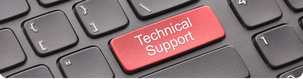 Y Web Solutions Support